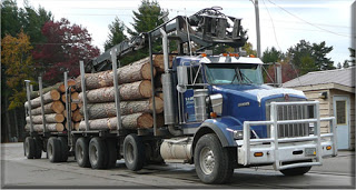 Lumber company expedites shipping procedures