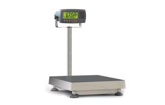 Rinstrum launched countR Scales